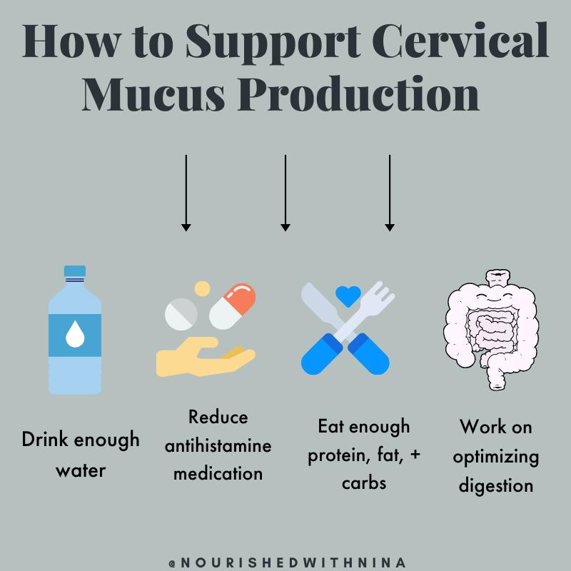 Cervical Mucus and Fertility Support.png